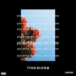 Tyzo Bloom & MOONZz - Street Lights