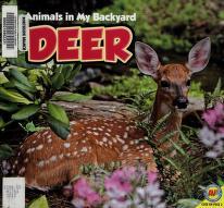 Cover of: Deer   Jordan McGill