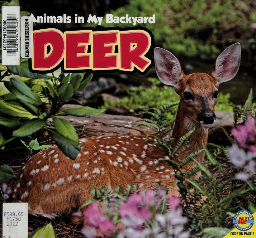 Deer by Jordan McGill